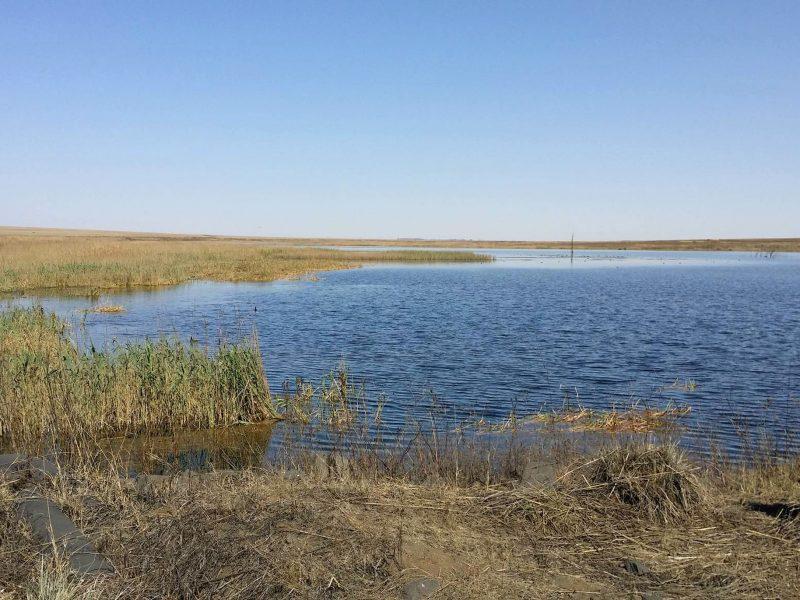 Shangoni_Surface Water_Image (1)